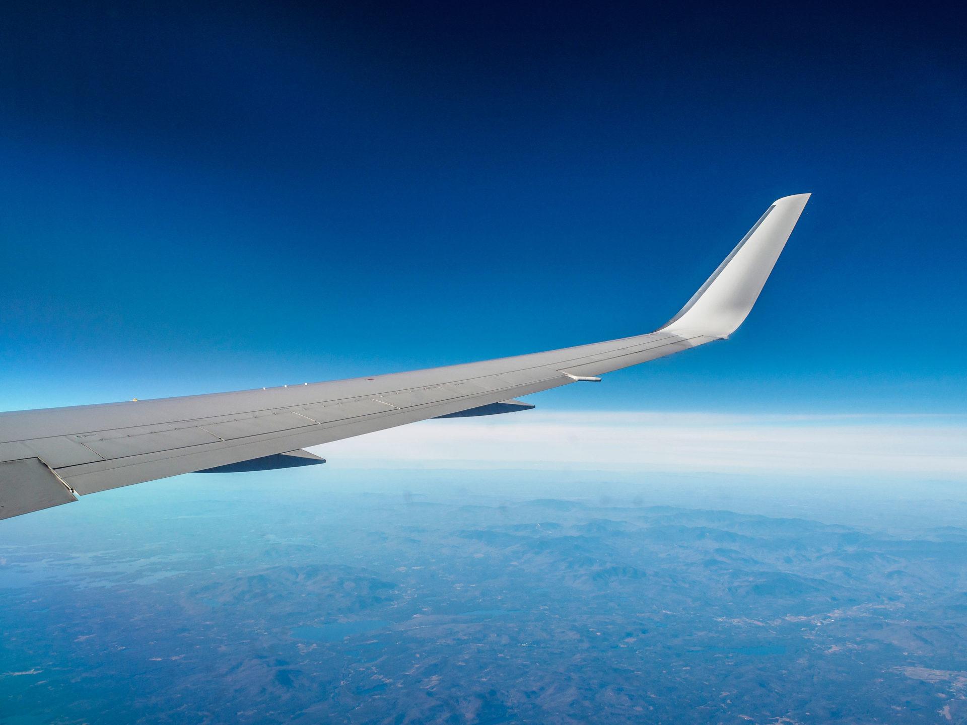 Die Flugzeugflügel und das Reisen allgemein stehen für den Freiraum der durch das Lernen von Sprachen entstehen kann.